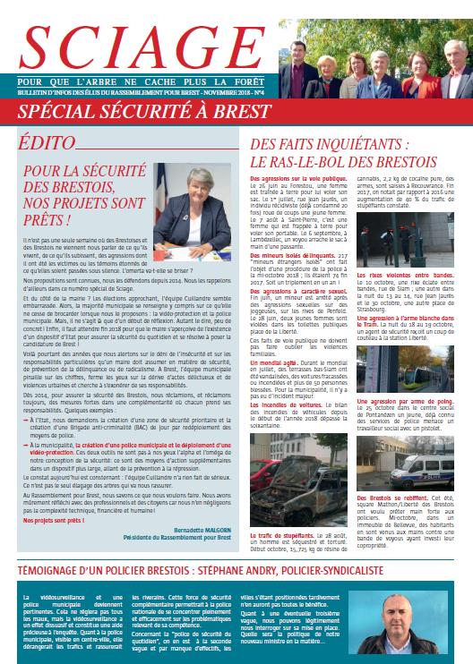 Sciage spécial sécurité Rassemblement pour Brest